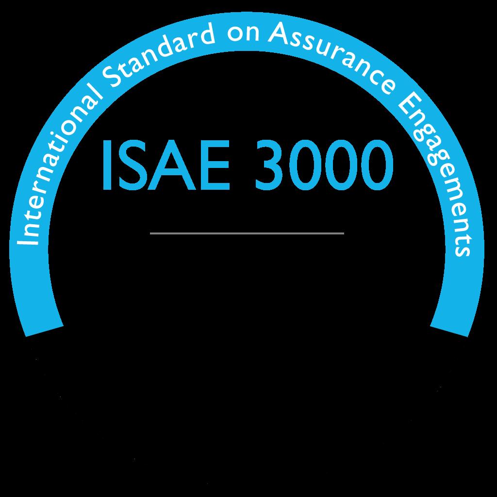 ISAE 3000 type 1